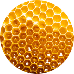 Ingredient - Manuka Honey