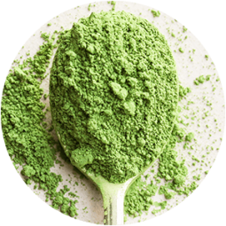 Ingredient - Matcha